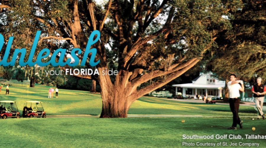 Visit Florida Reviews Digital Business