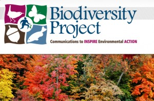 new business Biodiversity Project