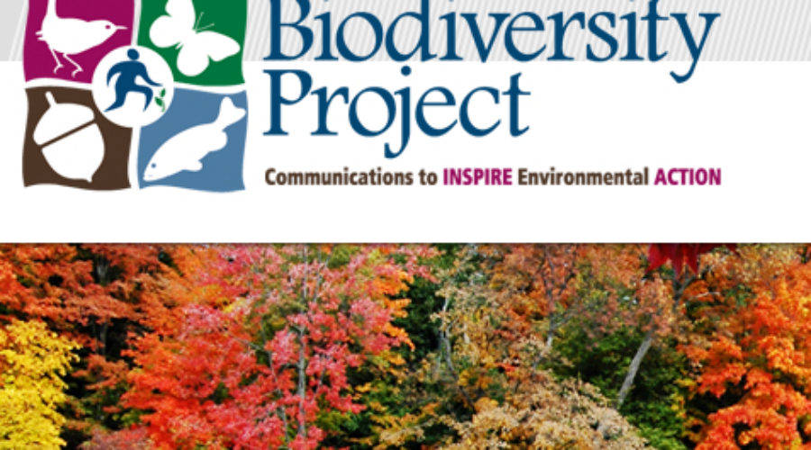 Biodiversity Project, Communications to Inspire Environment Action, seek Digital Help