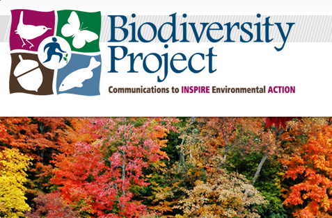 biodiversity project Biodiversity project biodiversity conservation on the earth is related to the protection of rainforest, where live more than half of the 10 million species of the.