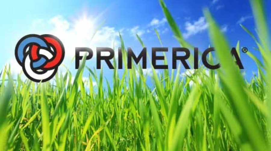 Set free by Citi and getting new headquarters: Primerica sees its future