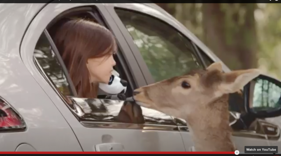 Chevrolet's new Marketing head