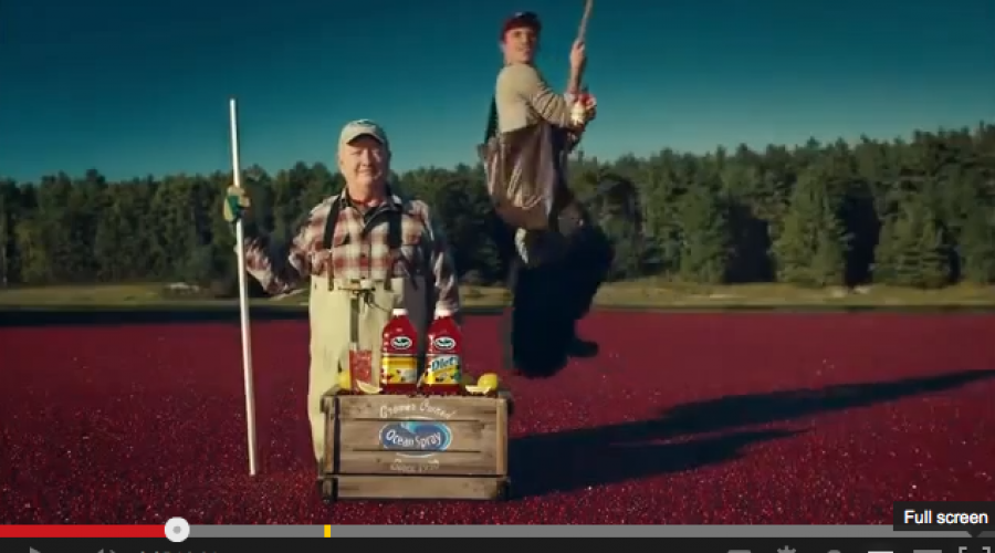First Global CMO at Ocean Spray