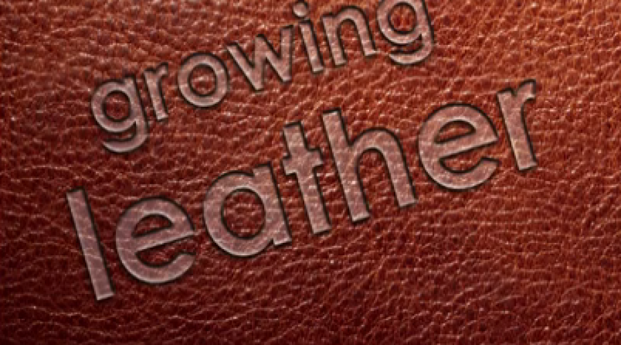 New Industry: Growing Leather