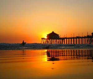 Surf City USA Seeks CMO