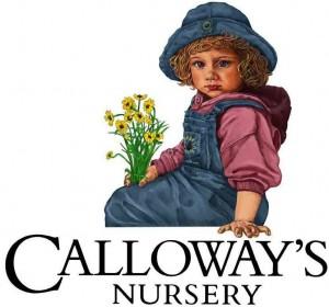 20 location Nursery company promotes new VP of M