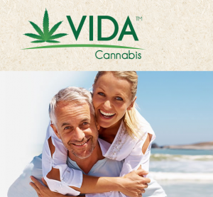 Vida Cannabis lights it up with new CMO