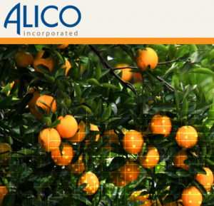 The new largest citrus producer in the country