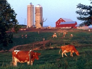 Importance of Agriculture Campaign RFP
