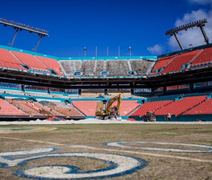 Opportunity abounds with the Miami Dolphins