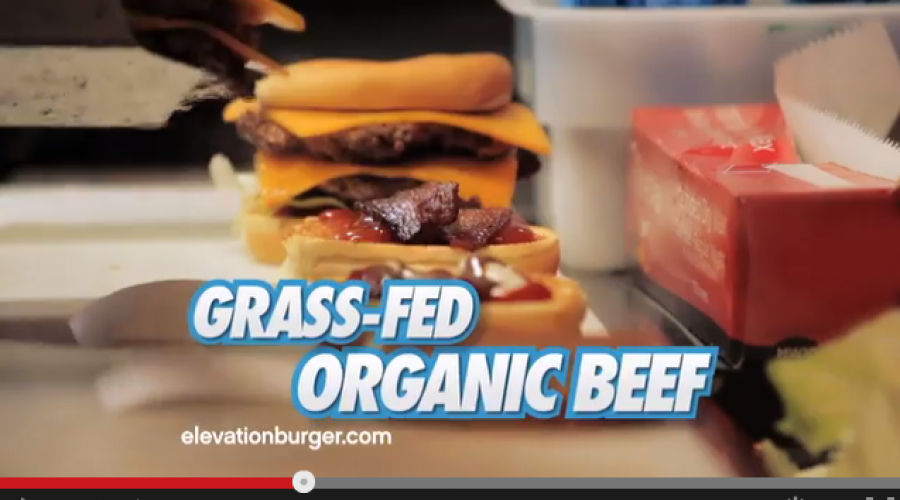 Steal This Account: Elevation Burger