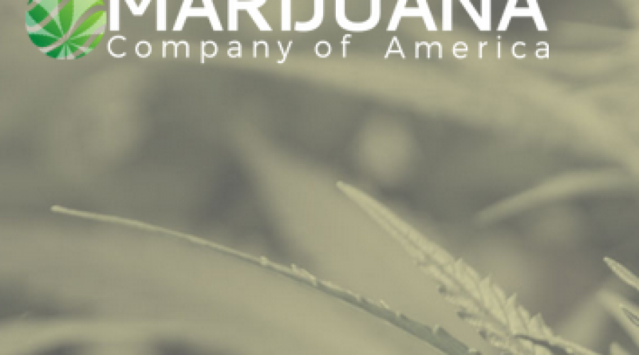 Marijuana Company of America rolls in new CMO & COO