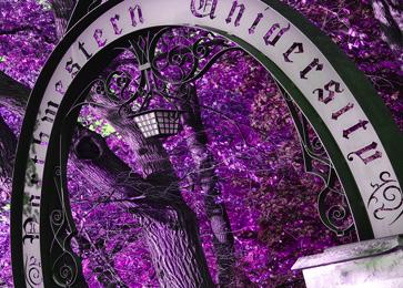 ev_arch_purple