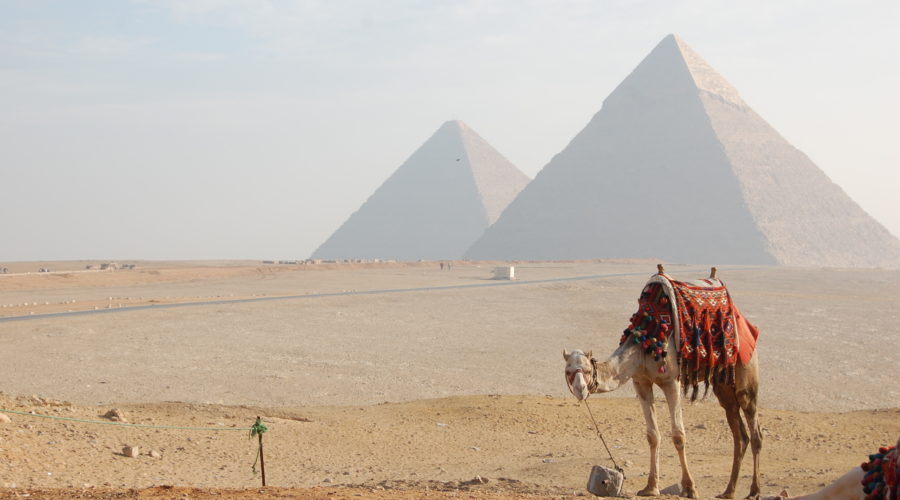 Egypt Tourism Authority has a problem