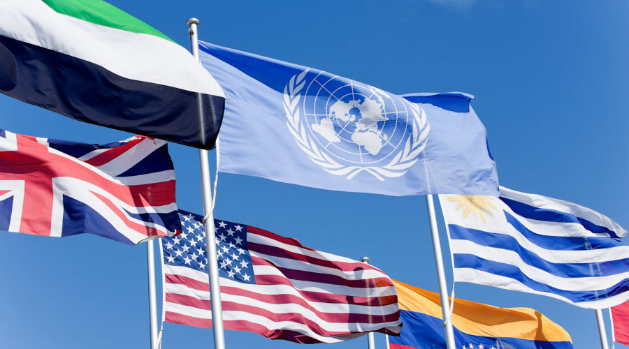 United Nations In Seek Of A Digital Marketing Agency