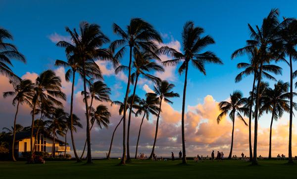 RFP: Hawai'i Tourism Authority PR, Digital & Social Media