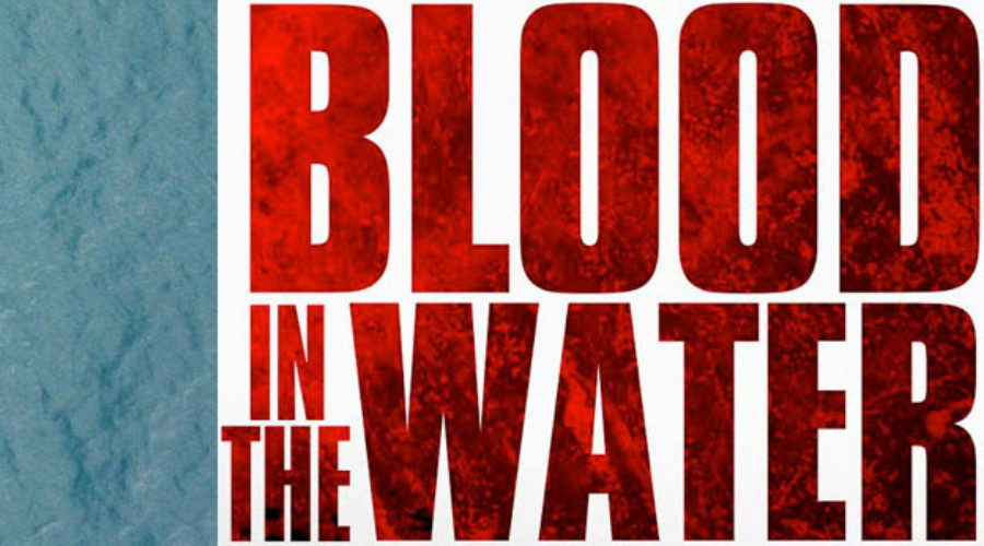 Blood in the Water over at MediaVest