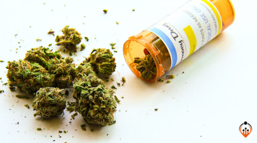 Medical Marijuana company brings on CMO