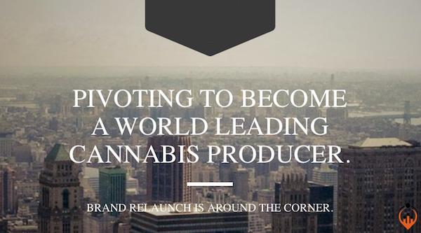 Soon to launch Cannabis Client should get a 2nd marketing opinion
