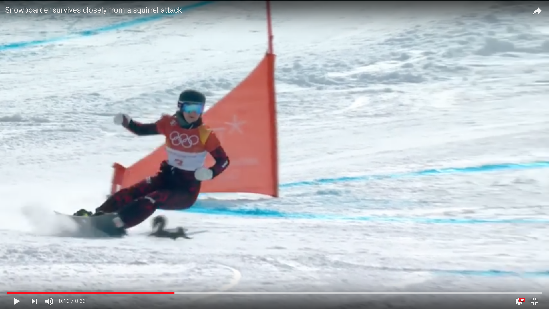 Snowboarder Survives Squirrel Attack