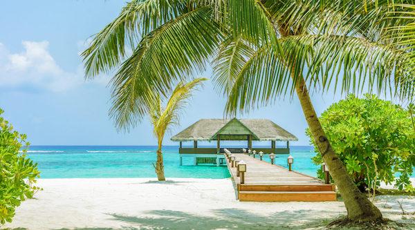 Florida Destination RFP