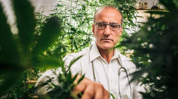 Cannabis clinic company checks-in Diageo/P&G executive
