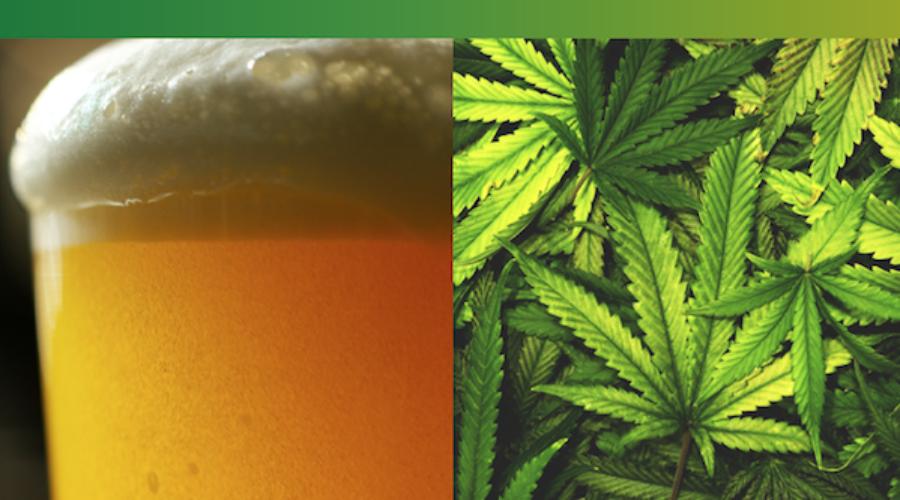 Beer/Weed/Lead