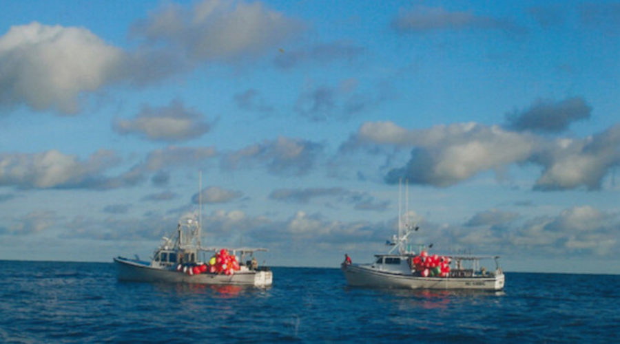 State Commercial Fishermen Org Cast RFP
