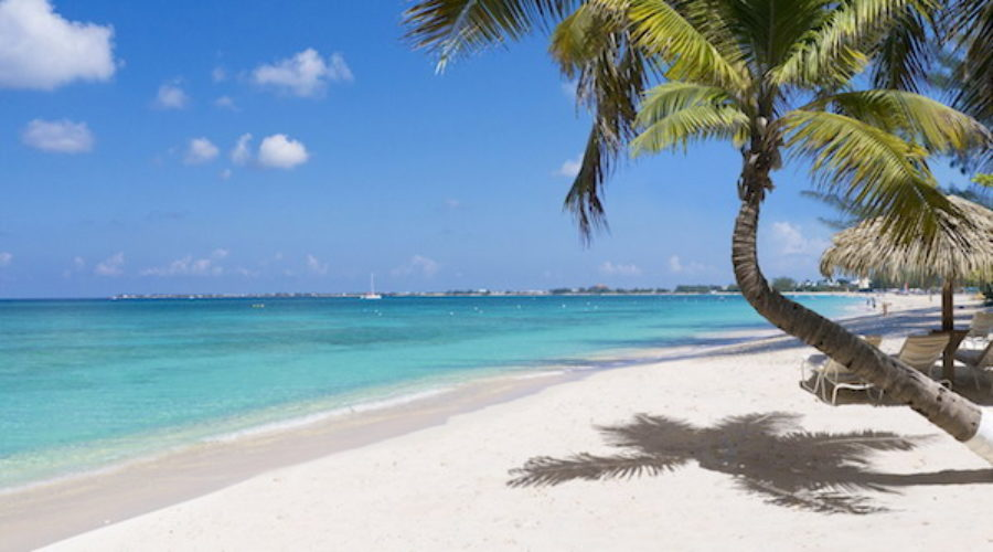 Cayman Islands Attraction RFP