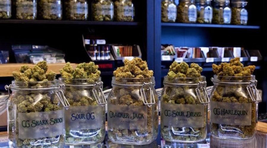 Cannabis Trade Group RFP