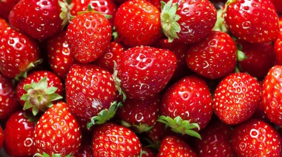 $500K Strawberry RFP